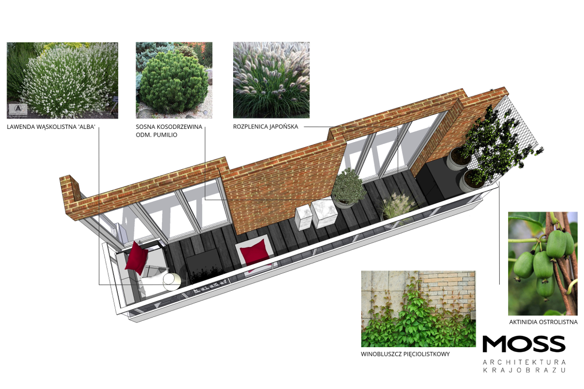 Rys_18_projekt_balkon I_szata roślinna_WaKr_2018
