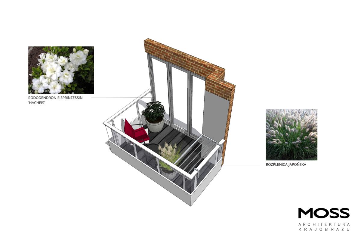 Rys_20_projekt_balkon II_szata roślinna_WaKr_2018